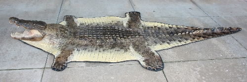 crocodile rug - rugs ideas